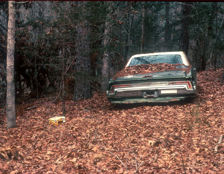 A abandoned green car is partially covered by leaves.